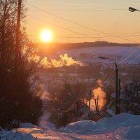 Морозное утро. :: Любовь