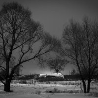 зима :: Yu Nakanya