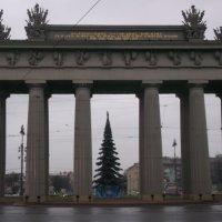 Новый Год :: Svetlana Lyaxovich