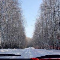 Путешествие красной варежки... :: Валерия  Полещикова