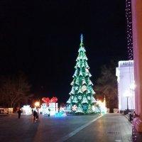 Елка на Думской площади в Одессе :: Владимир