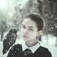 Черный ворон :: Anna Albert