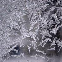 Узоры деда мороза :: Nina Streapan