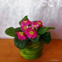 Примула :: Nina Yudicheva