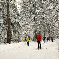 На лыжи в любую погоду! :: Милешкин Владимир Алексеевич