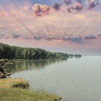 Обское водохранилище :: Дмитрий Конев