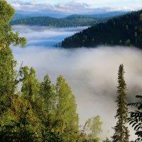 Туман заполнил долину :: Сергей Чиняев