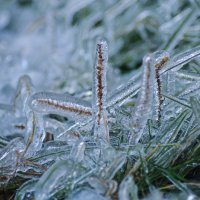 Ледяной плен :: Андрей Щетинин