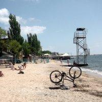 На пляже до начала сезона :: Svetlana Lyaxovich