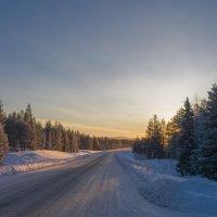 Зимняя дорога :: Виталий