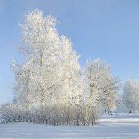 Зимний пейзаж... :: Игорь Суханов