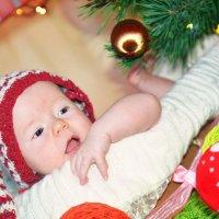 Ева наше чудо новогоднее)) :: Любовь