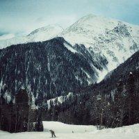 Кавказские горы :: Максим Даниленко