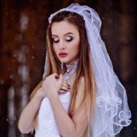 Мороз и нежность :: Виталий Лень