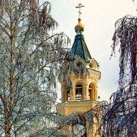 Колокольня кафедрального собора :: Vladimir Lisunov