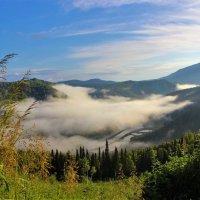 Туман над рекой :: Сергей Чиняев