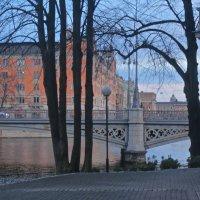 краски Стокгольма :: Елена