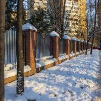 Зима :: Elena Ignatova