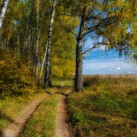 Осень :: Igor Yakovlev
