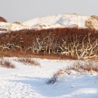 Зимний пейзаж острова Норденей :: Kapris VS