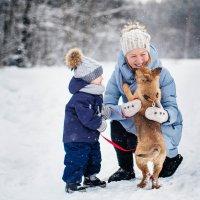 Зимняя прогулка :: Виктория Гринева