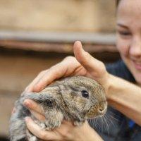 Just a rabbit ^^ :: Сергей Nikon