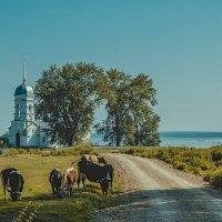 Дорога в церковь :: Дмитрий Конев