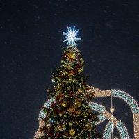 Новогодние елки Москвы :: Наталья Верхотурова
