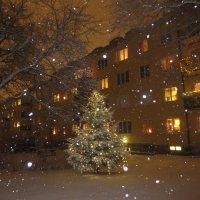рождественская :: Елена