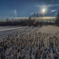Мороз и Солнце 5 :: Андрей Дворников
