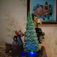 Со Старым Новым годом!!! (Санкт-Петербург). :: Светлана Калмыкова