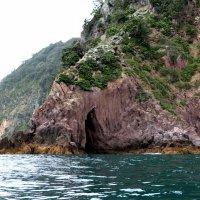 Whakatane, whale island :: Natalya секрет