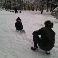 В Коломенском парке в январе 2017! :: Ольга Кривых