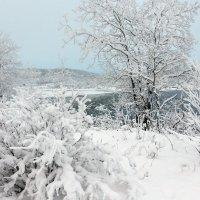 У озера Нял-Явр :: Ольга