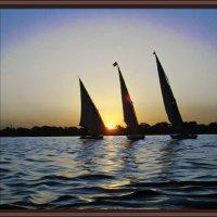 """картина """"Утро на реке Нил"""" :: Владимир Бровко"""