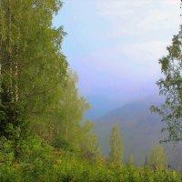 Туманные дали :: Сергей Чиняев