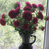 Хризантемы на окне :: татьяна