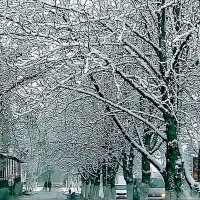 зима. :: Ivana