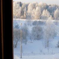 ...а из нашего окна...(нет не площадь -красота!)) :: Алена
