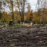 Смоленское православное кладбище. Жизнь продолжается :: Александр Максимов
