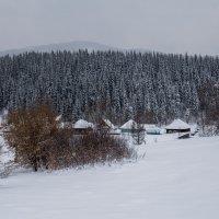 Зимовье.Вост.Казахстан. :: lev