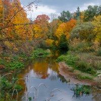 Осень на реке Снежеть :: Александр Березуцкий (nevant60)