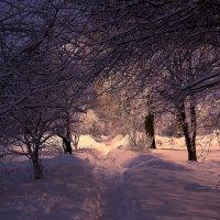 Зимний вечер :: Александр Руцкой
