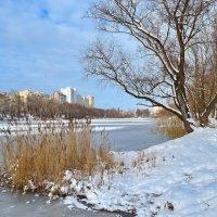 Зима в городе :: Валентина Данилова