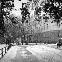 Зимний город :: Сергей Форос