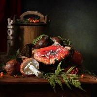 Мухомор - лечебный гриб :: Татьяна Карачкова