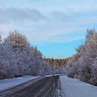Зимний день :: Антонида Михайлова