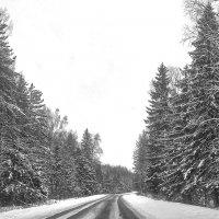 А дорога серою лентою вьется... :: Alexandr Zykov
