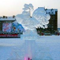 Петушок, петушок,ледяной гребешок :: Наталья Пендюк Пендюк