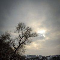 Старый Днепр :: Руслан Люля